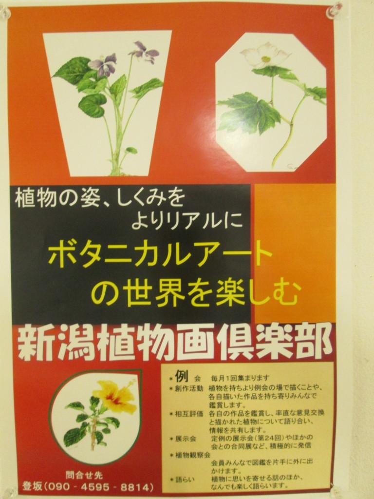 新潟植物画倶楽部